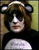 husariaagatka: (Panda Vince)
