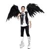 kradamadness: (wings)