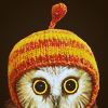 owlmoose: photo of little owl in a stocking cap (owlhat)