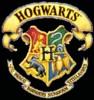 amberfox: (Hogwarts)