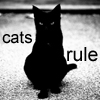 king_touchy: Black cat with text: cats rule (cat)