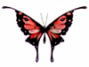 branchandroot: red butterfly (butterfly red)