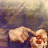 fee_bleue: (Coins)