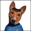 mific: (spock-dog)