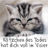 "apollymi: Grumpy kitten, text translates to ""the Kitten of Death has you in sight"" (Kitten: Kätzchen des Todes)"
