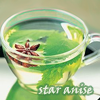 staranise: A star anise floating in a cup of mint tea (Default)