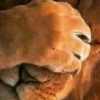 rowdy_tanner: lion with paw over its face (facepalm)