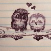 chaoticallyclev: (cute owls)