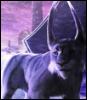 herdcat: (Default)