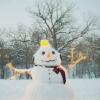 anonysanta: (snow man)