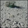 jewelz996: (Sand)