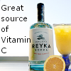 cat_77: vodka & OJ (vodka)