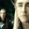 elvenking: (I suspect this.)