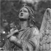 flick: (Stone angel)