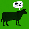 "celli: the dark outline of a cow on a gree background, with a speech bubble saying ""holy cow!"" (holy cow!)"