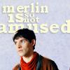 spaces_inbetween: (Merlin is not amused)