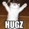 marcicat: (kitteh hugz)