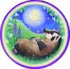 marcicat: (badger moon)
