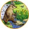 marcicat: (badger stream)