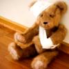 niko: (Whump!Teddy)