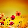 tomorrowwith: (Flowers)