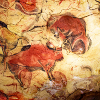 sholio: Prehistoric bison painting on a cave wall (Cave painting-Bison)