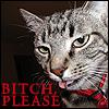 telophase: (cat - bitch please)