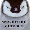 telophase: (penguin - not amused)