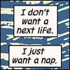 shatteredshards: Clint thinks that naps are awesome (hawk nap)