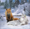 eldest_of_firms: (Fox And Wolf)