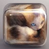 junipersky: Cube Kitten by Creativedash (Anxiety)