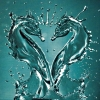 sharpest_asp: Two seahorse-shaped water splashes facing each other (General: Double Seahorse)
