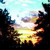cyborganize: (loves sunset)