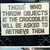 "abouthalfthree: ""Those who throw objects to the crocodiles will be asked to retrieve them."" (Objects from Crocodiles)"