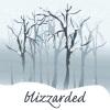 aldersprig: (blizzarded)