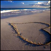 muccamukk: A heart drawn in beach sand, ocean in the background. (Misc: Beach Heart)