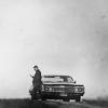 nenuca: (impala)