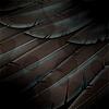walkmyhalls: (metal wings)