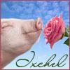 ixchel55: (ixchel-pig&rose)