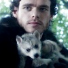 guestwronged: (Don't you wish your direwolf)