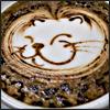 llywelya: (coffee, kitty, latte, misc)