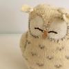 lemonclementine: (Owl)