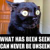 gairid: text (Text - Never Unseen Cat)