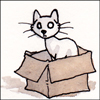jjhunter: blank-eyed cat would like to convince you sitting in a box is the thing to do (cat in a box)