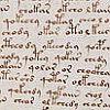 fajrdrako: Script - Voynich codex ([Script])