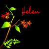 helenorvana: (Personalized - vibrant greenery on black)