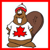istia: cartoon beaver wearing canadian flag & a tuque (x | cdn beaver)