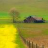 gairid: Barn & fields (Seasonal - Spring - Rural)