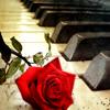 mierin: (piano)