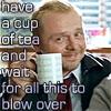 hostilemakeover: (cuppa tea)